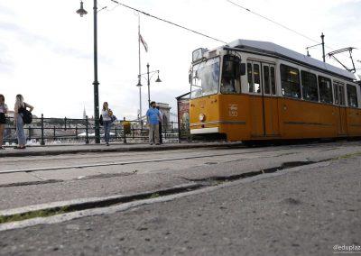 Budapest - Paseo 044