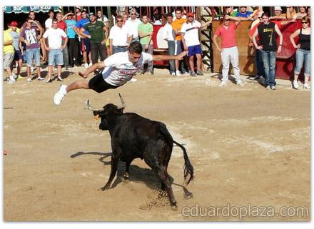 TorosGuadalupe