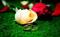 Matrimonio, sin más